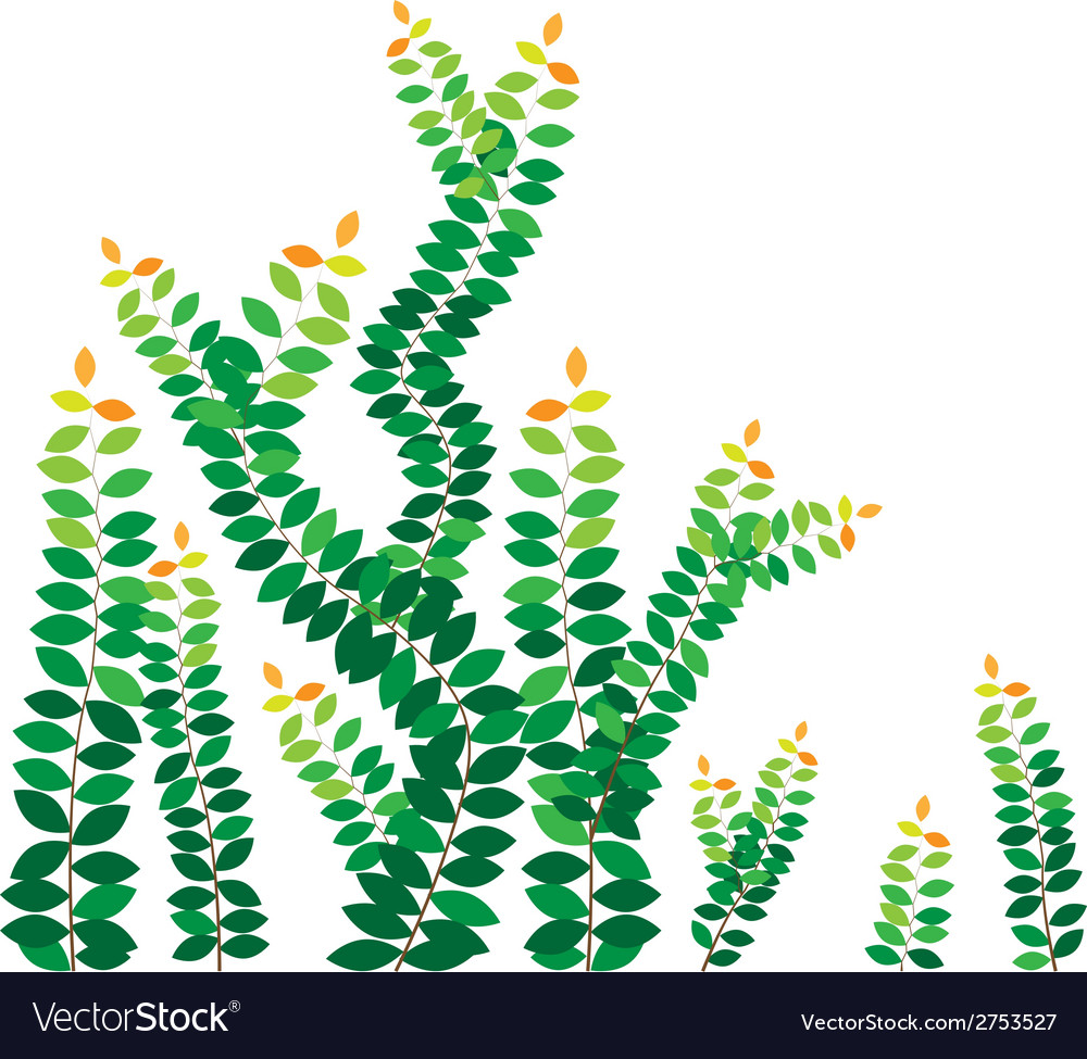 Green leaves on the wall vector | Price: 1 Credit (USD $1)