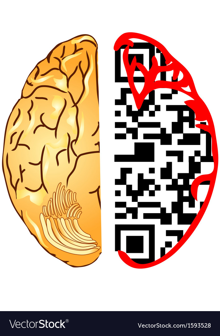 Brain and qr code vector | Price: 1 Credit (USD $1)