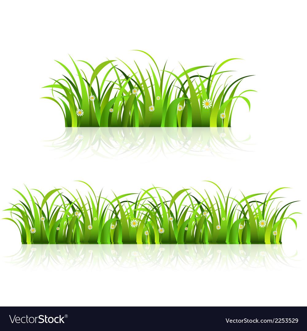 Grass borders vector | Price: 1 Credit (USD $1)