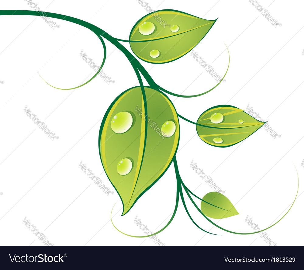 Pattern of twigs and leaves 1 vector | Price: 1 Credit (USD $1)