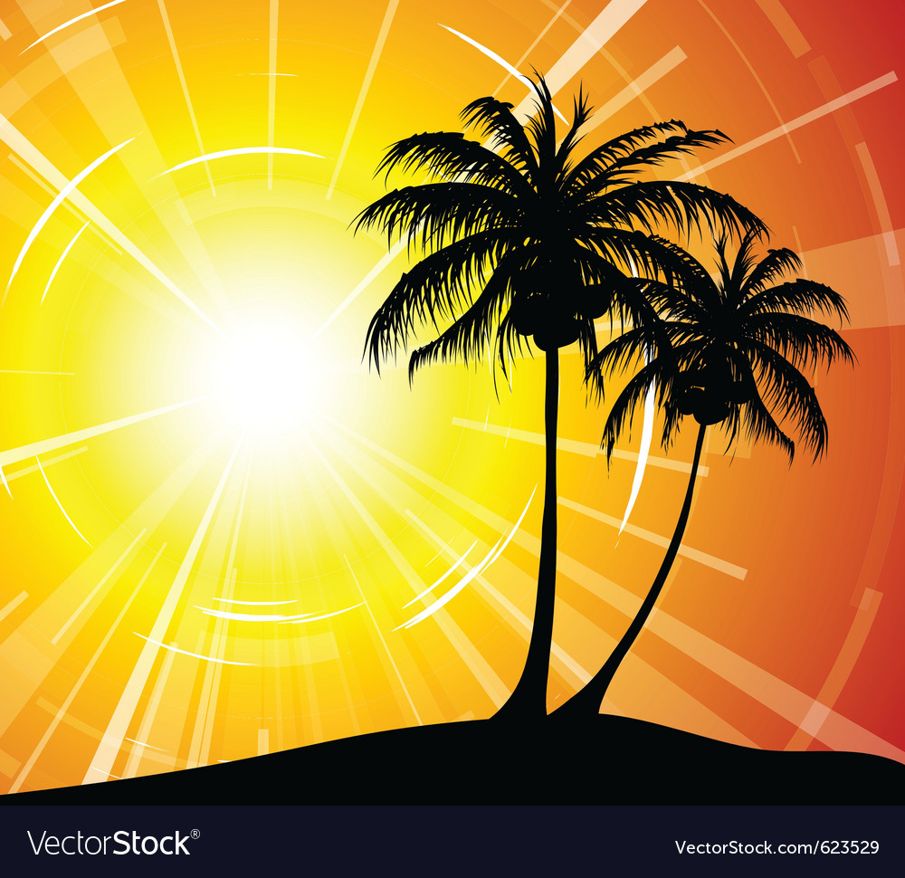 Sunset on the beach vector