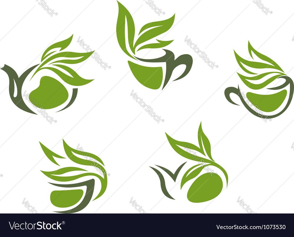 Symbols of green herbal tea vector | Price: 1 Credit (USD $1)
