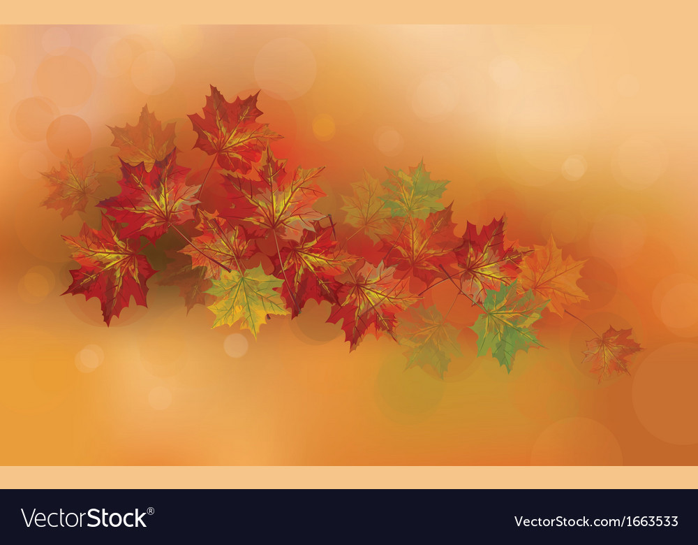 Fall vector | Price: 1 Credit (USD $1)