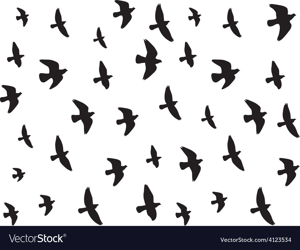 Flying birds isolated on white vector | Price: 1 Credit (USD $1)