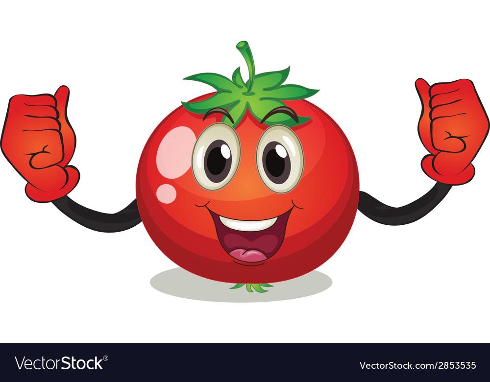 Tomato vector | Price: 1 Credit (USD $1)