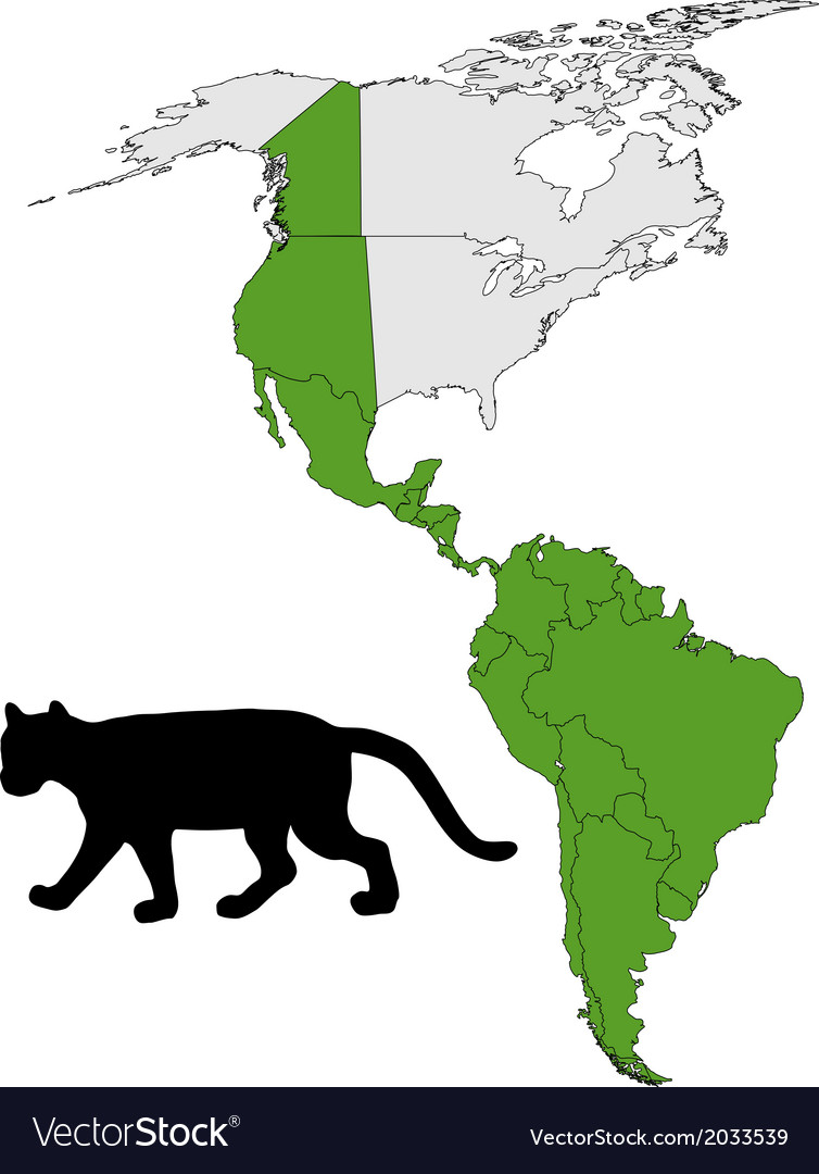 Cougar range map vector | Price: 1 Credit (USD $1)