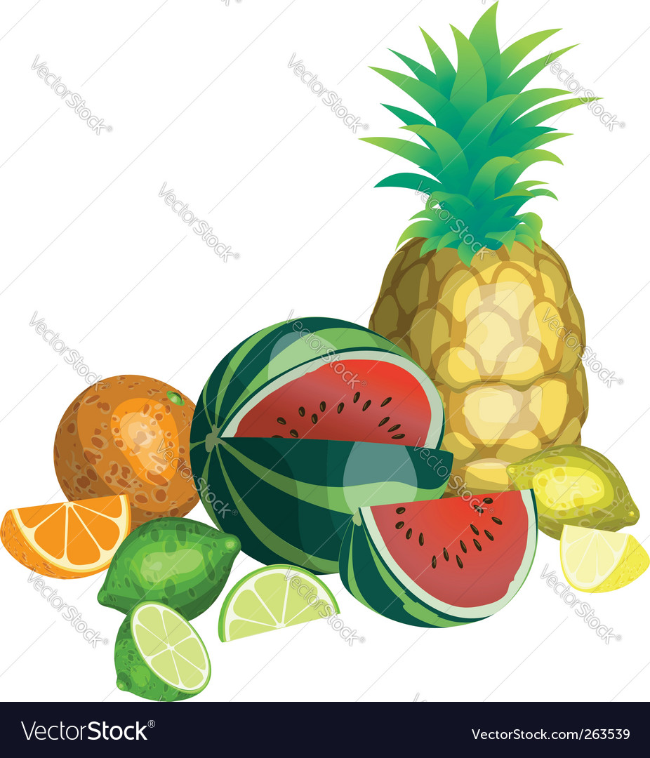 Fruit illustration vector | Price: 1 Credit (USD $1)