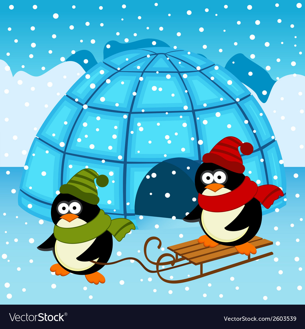 Penguin ice house vector | Price: 3 Credit (USD $3)