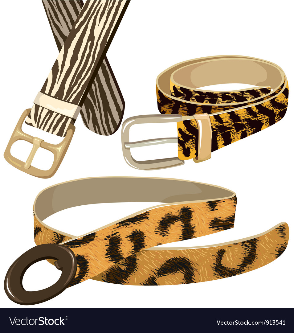 Belt with texture wild animal skins vector | Price: 3 Credit (USD $3)