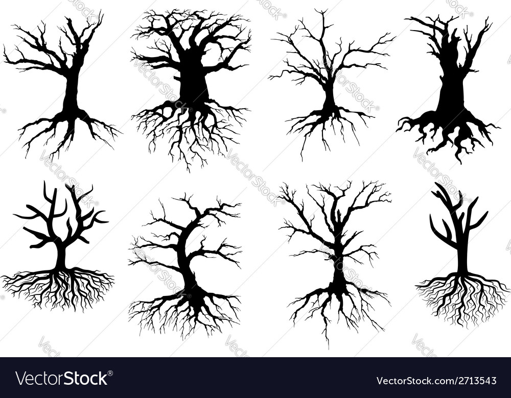 Bare tree silhouettes with roots vector | Price: 1 Credit (USD $1)