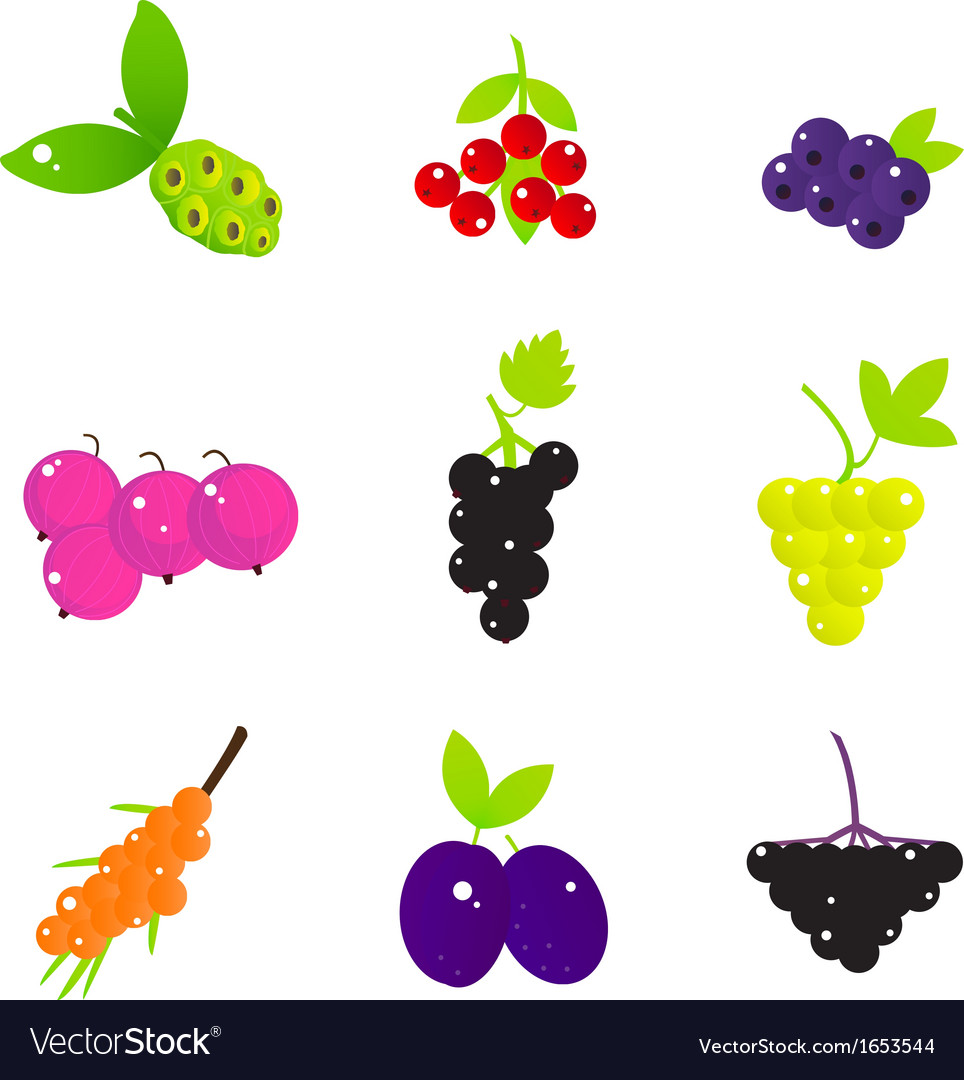 Summer fruit and berries set isolated on white vector | Price: 1 Credit (USD $1)