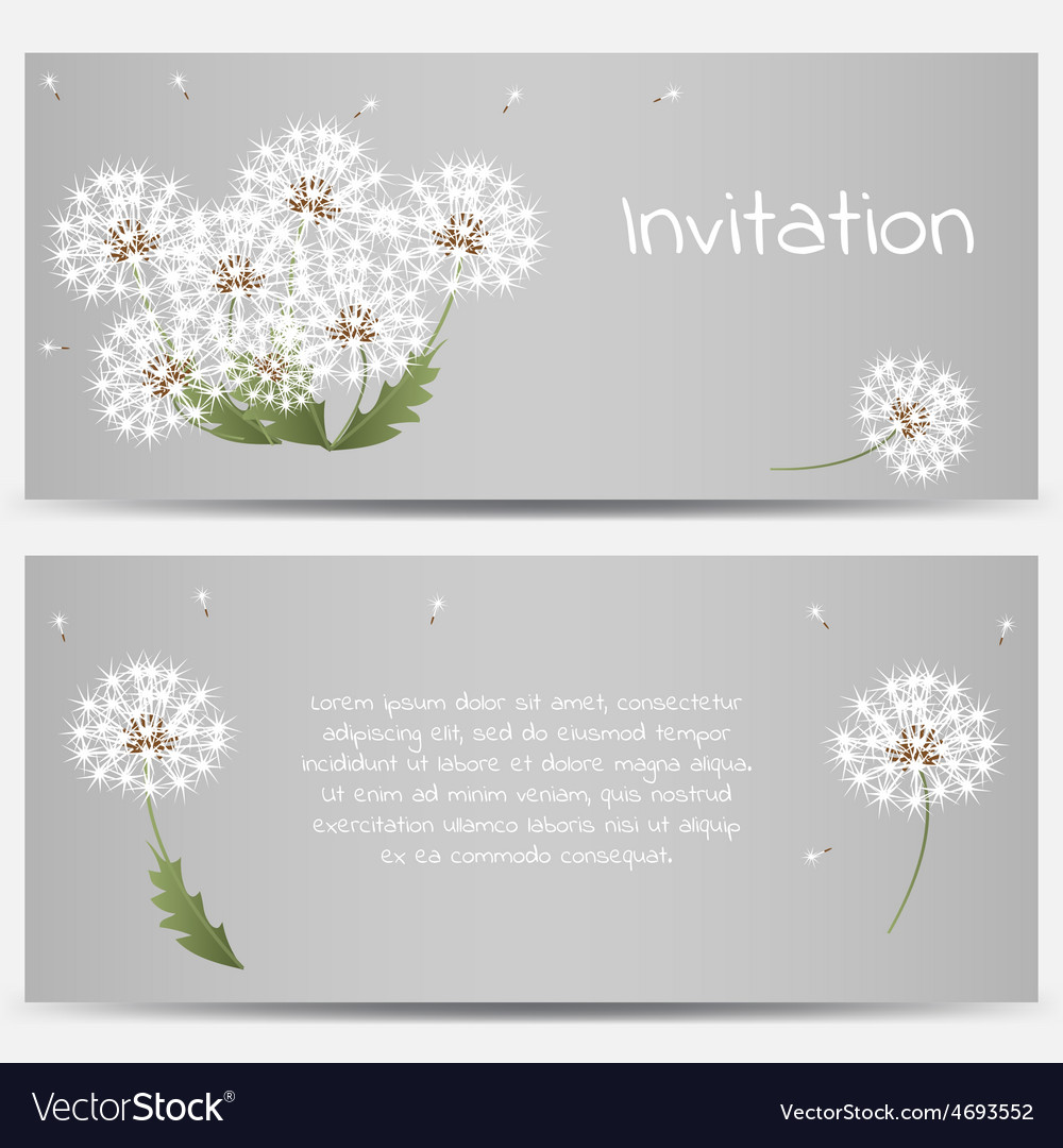 Invitation card with dandelions on grey background vector | Price: 1 Credit (USD $1)