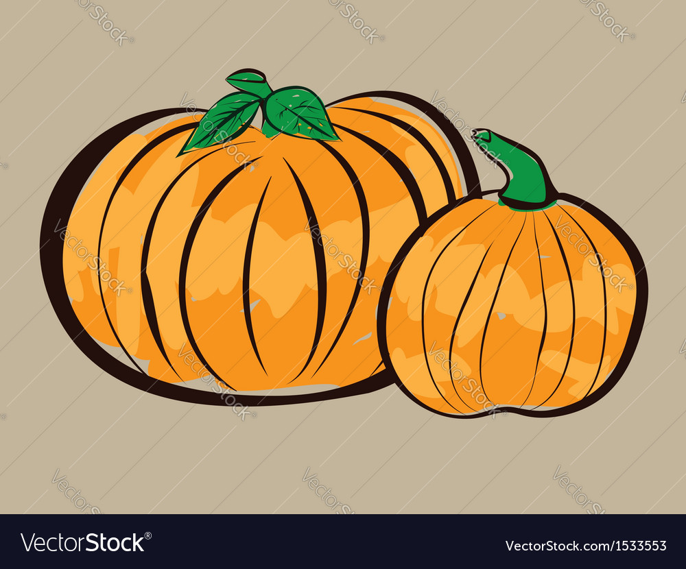Two pumpkins vector | Price: 1 Credit (USD $1)