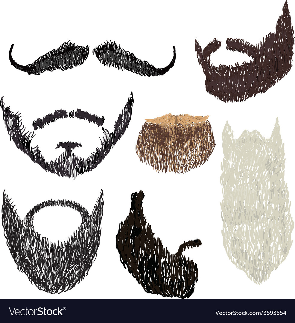 Beard with mustache vector | Price: 1 Credit (USD $1)