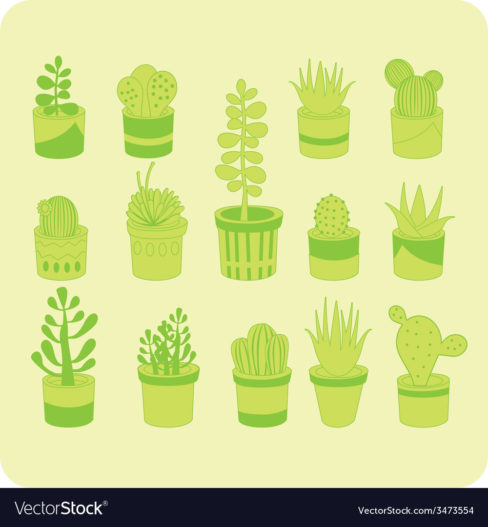 Succulents vector | Price: 1 Credit (USD $1)