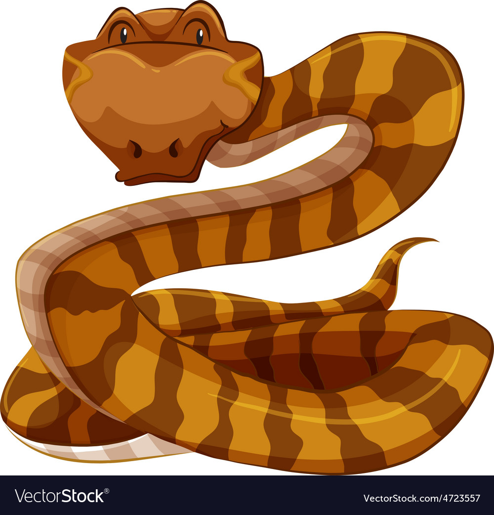 Snake vector | Price: 3 Credit (USD $3)