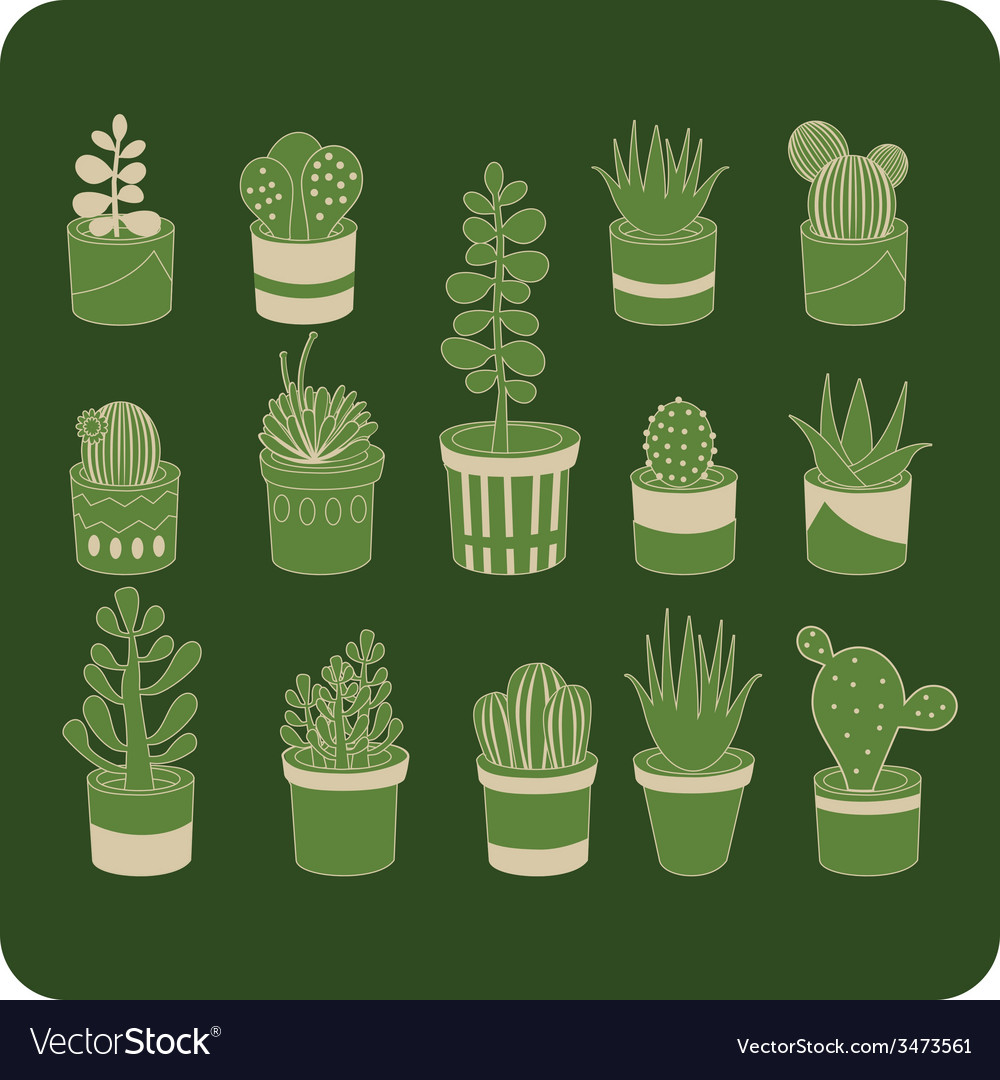 Succulent mix vector | Price: 1 Credit (USD $1)