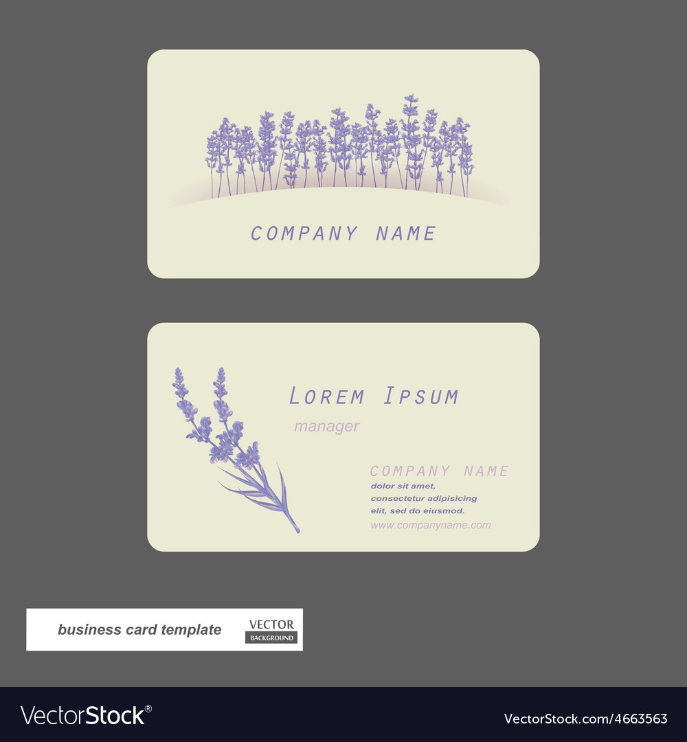 Lavender business cards vector | Price: 1 Credit (USD $1)