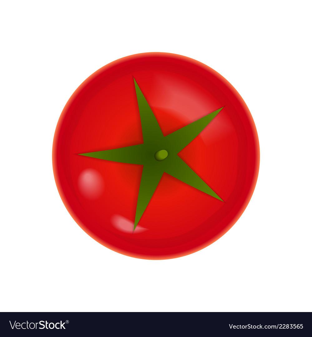 Tomato icon over white vector | Price: 1 Credit (USD $1)