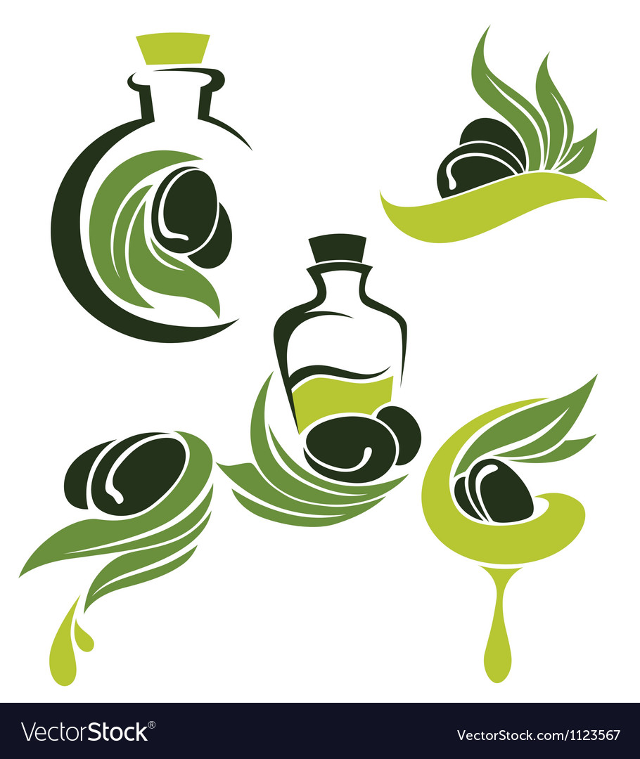Green olive leaves bottles and oil vector | Price: 1 Credit (USD $1)