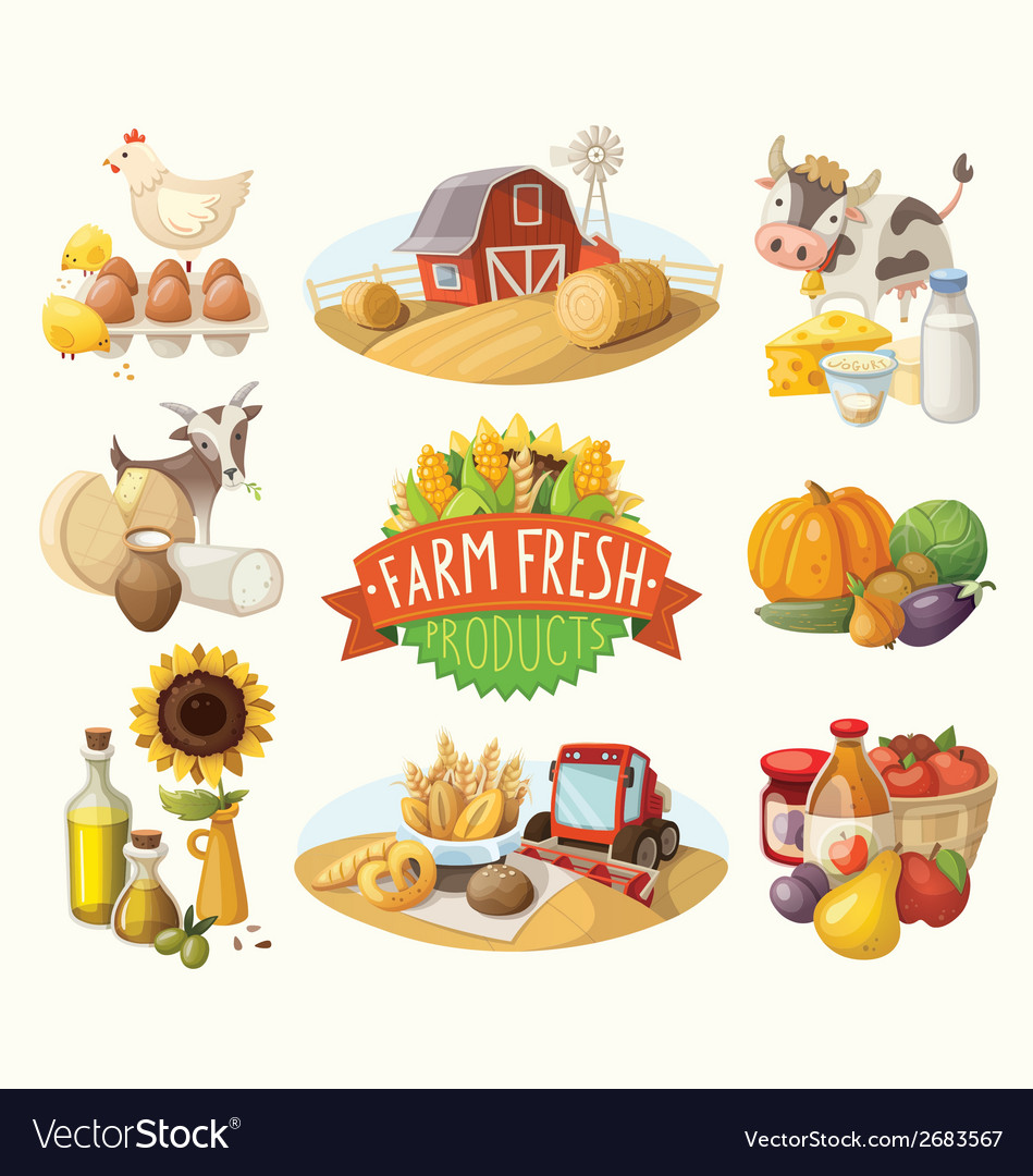 Set of with farm fresh products vector | Price: 3 Credit (USD $3)