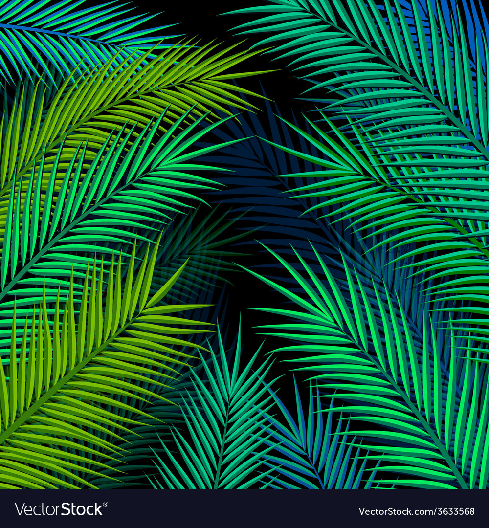 Tropical background with palm leaves vector | Price: 1 Credit (USD $1)