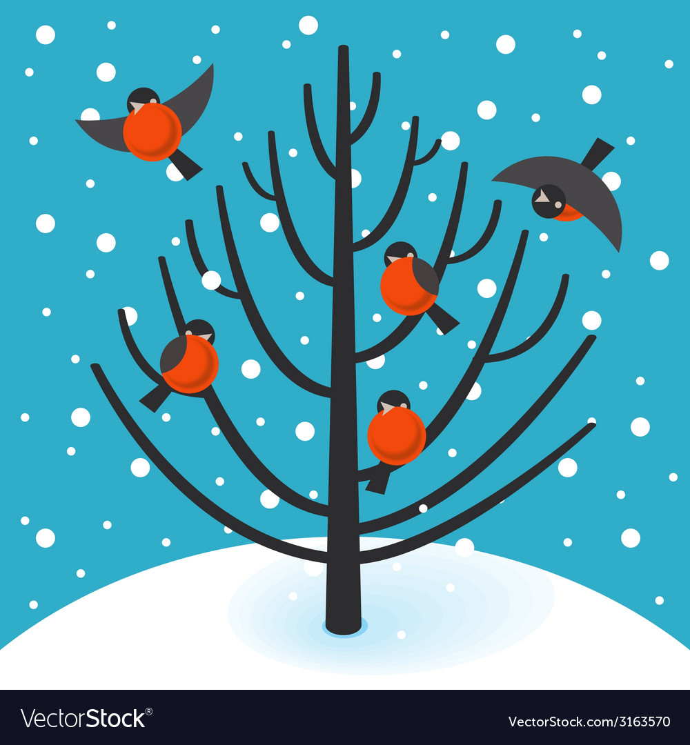Stock bullfinch on tree vector | Price: 1 Credit (USD $1)
