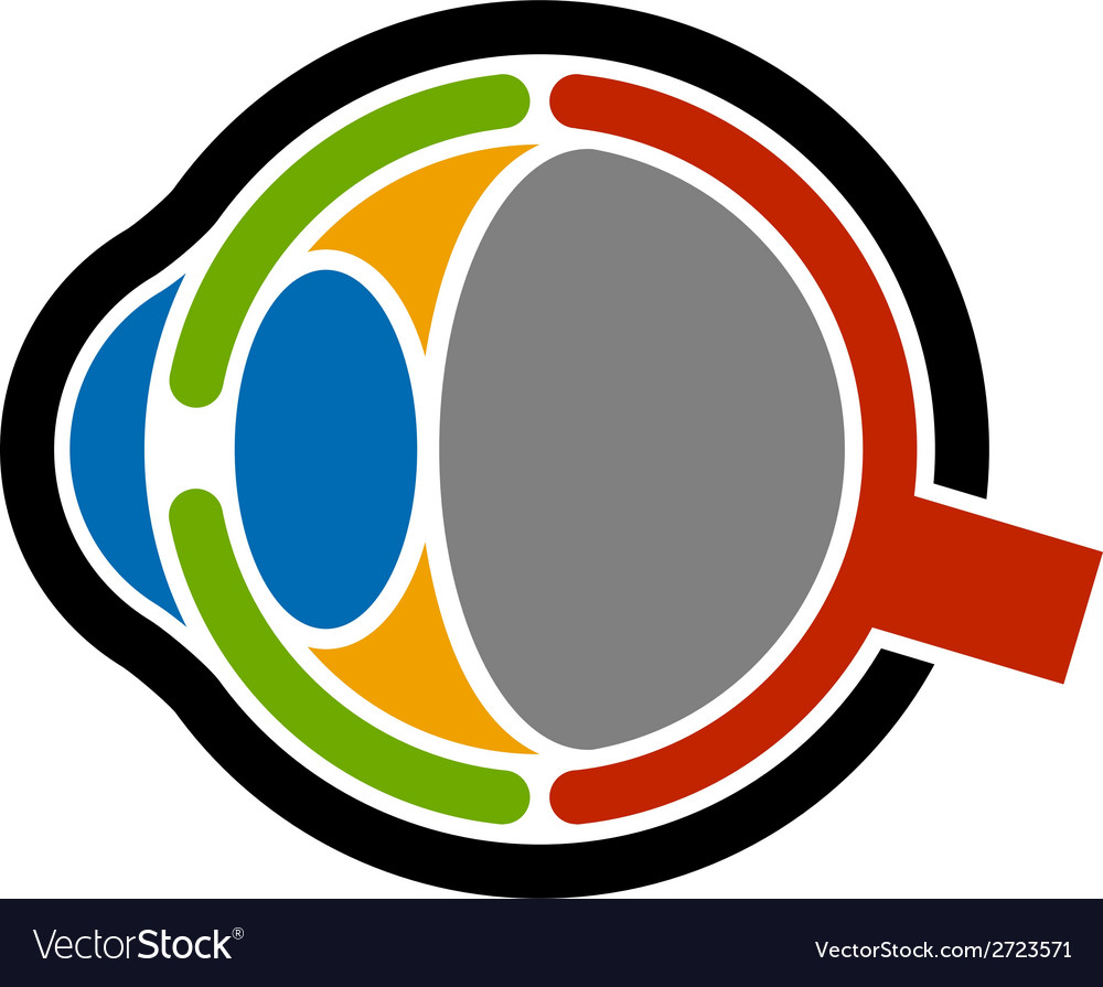 Anatomy human eye icon vector | Price: 1 Credit (USD $1)