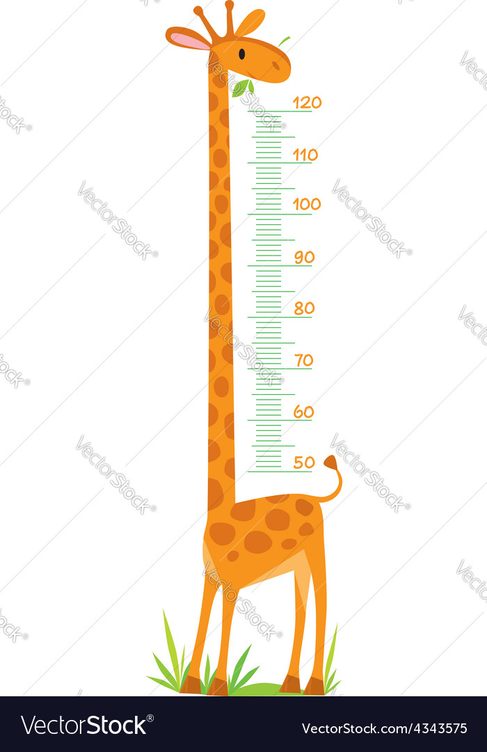 Giraffe meter wall vector | Price: 1 Credit (USD $1)