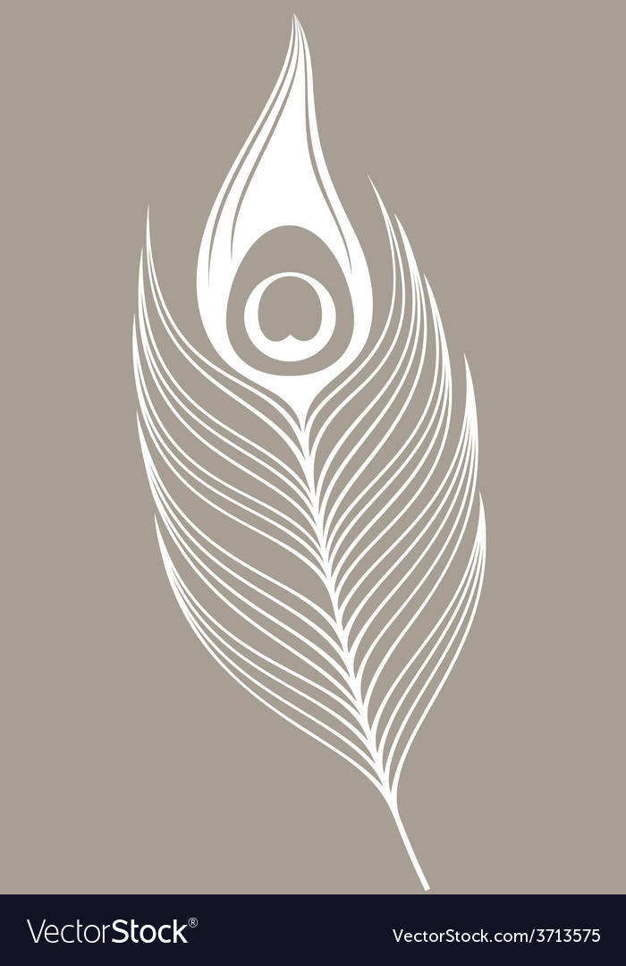 White peacock feather vector | Price: 1 Credit (USD $1)