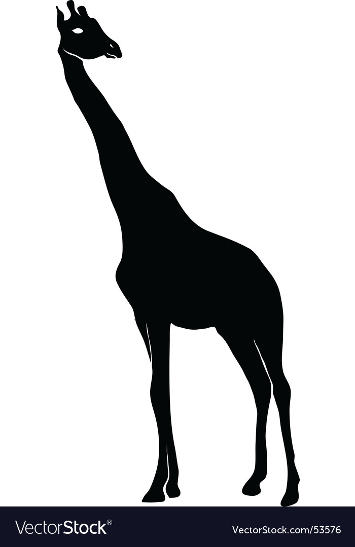 Giraffe outline vector | Price: 1 Credit (USD $1)