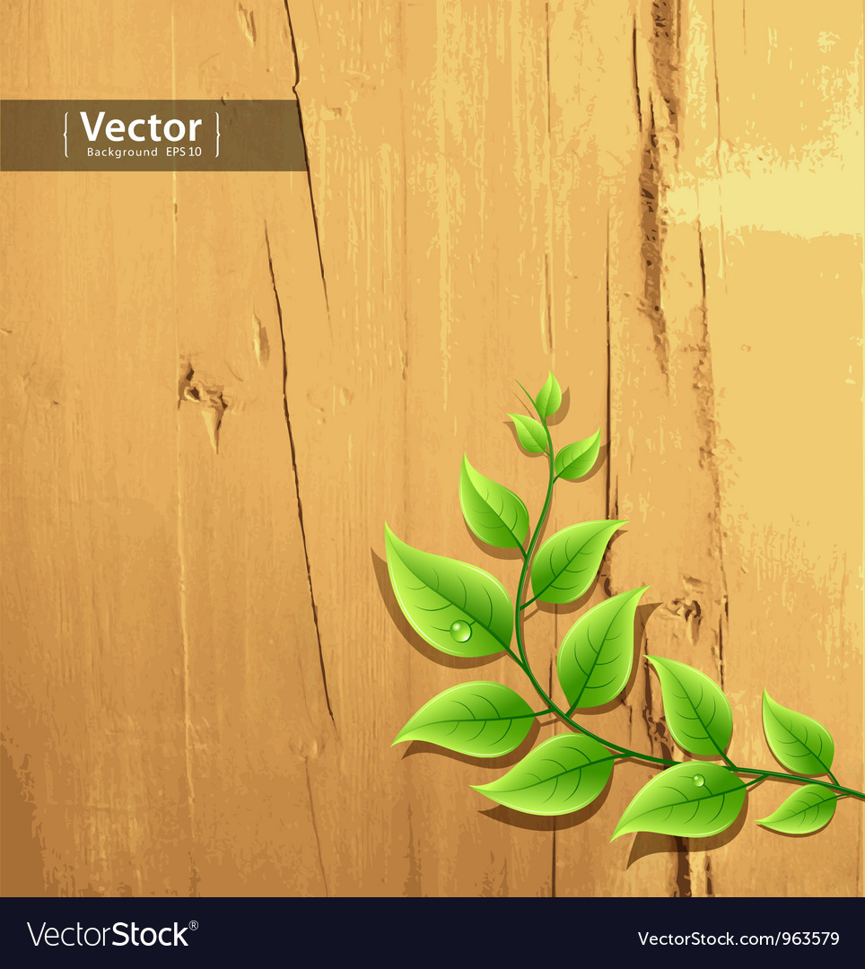 Fresh green leaf on wood background vector | Price: 1 Credit (USD $1)