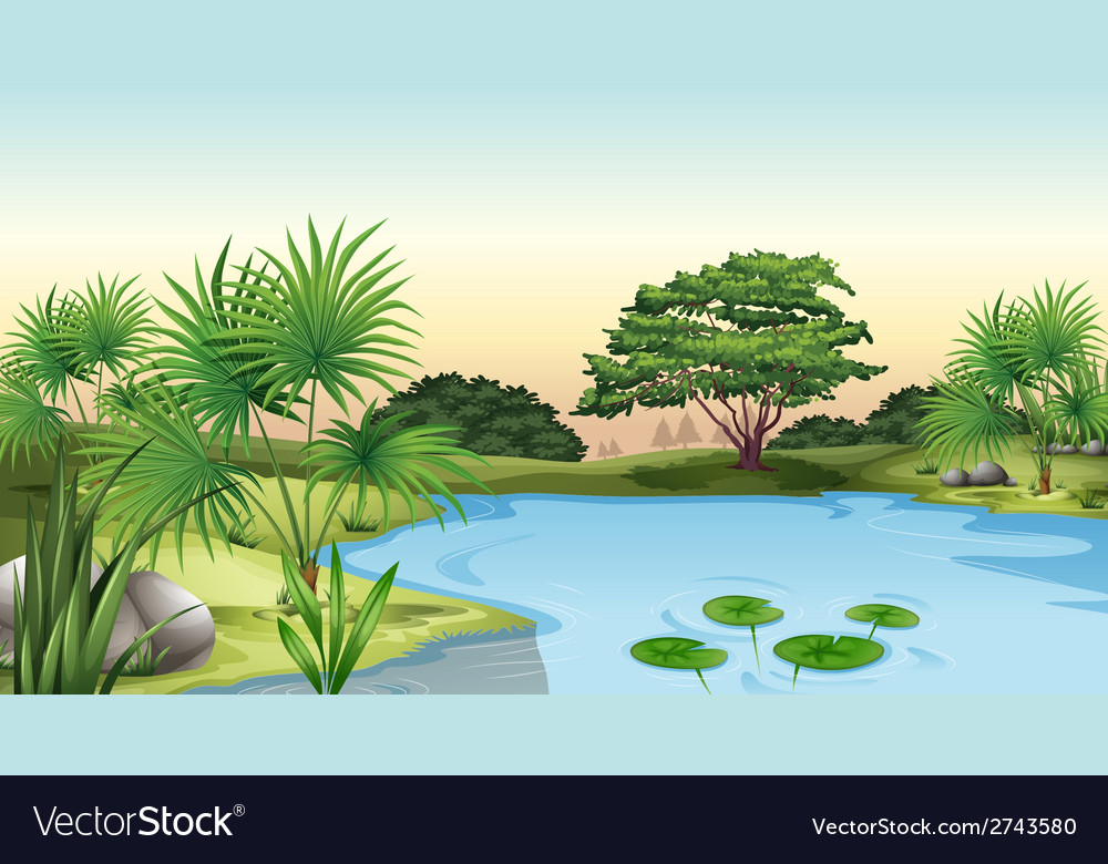 Green plants surrounding the pond vector | Price: 3 Credit (USD $3)