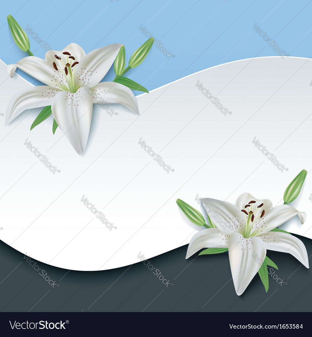 Greeting or invitation card with 3d flower lily vector | Price: 1 Credit (USD $1)