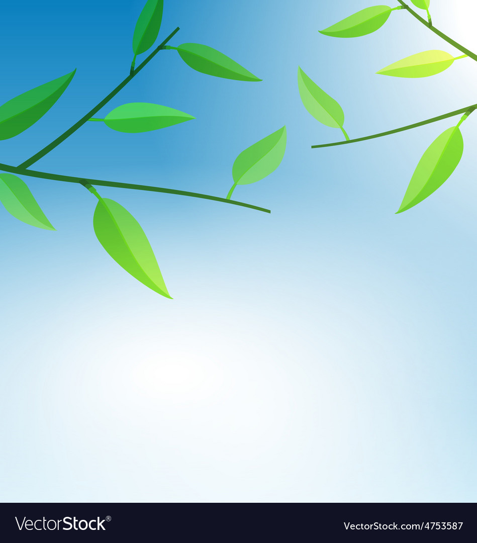 Branch tree with green leaves vector | Price: 1 Credit (USD $1)