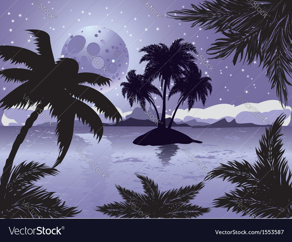 Night tropic island vector | Price: 3 Credit (USD $3)