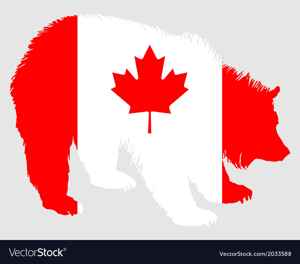 Canadian bear vector   Price: 1 Credit (USD $1)