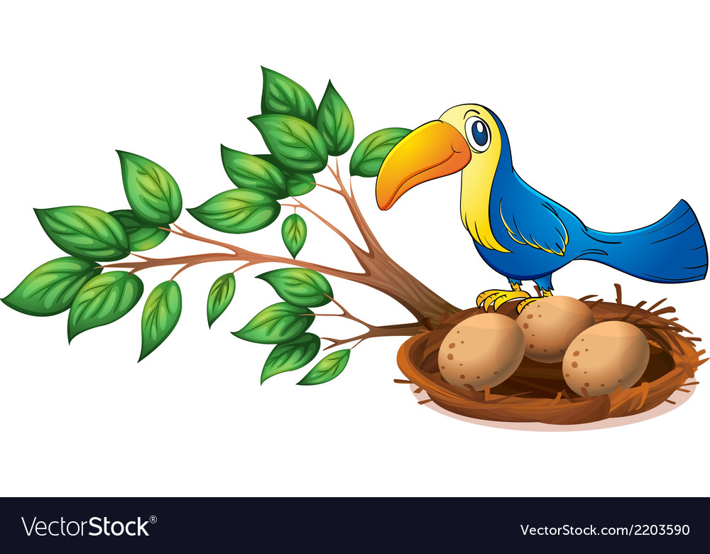 A blue bird above the branch of a tree vector | Price: 1 Credit (USD $1)