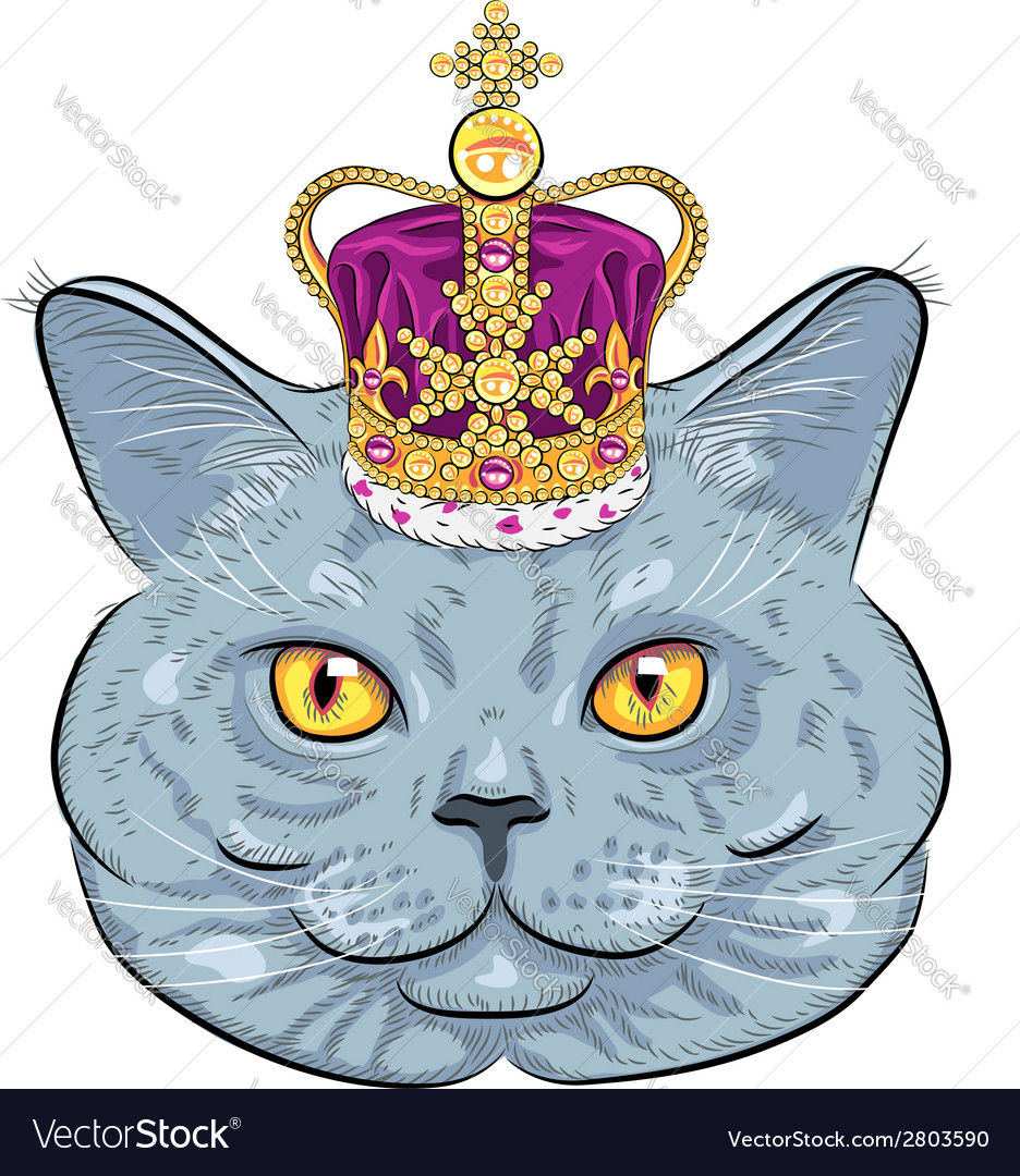 Funny british cat in gold crown vector | Price: 1 Credit (USD $1)