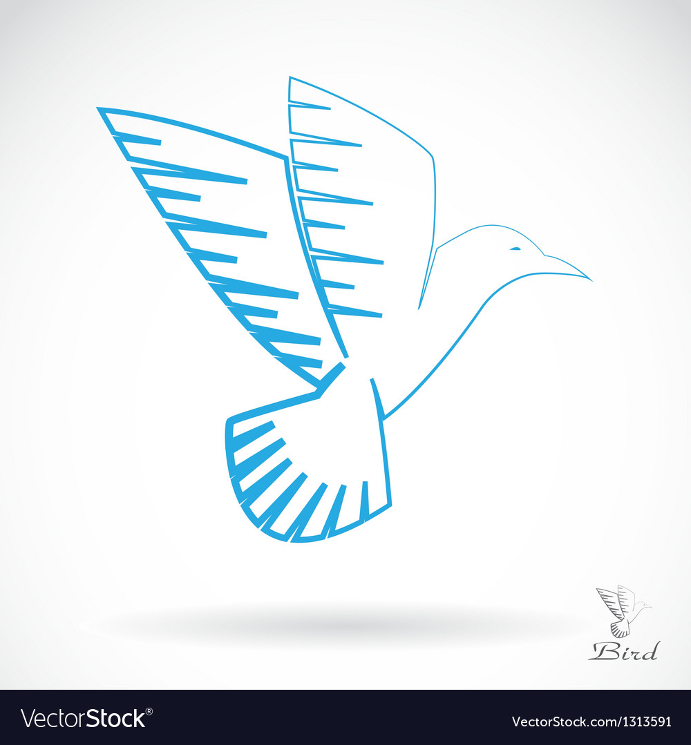 Bird vector   Price: 1 Credit (USD $1)