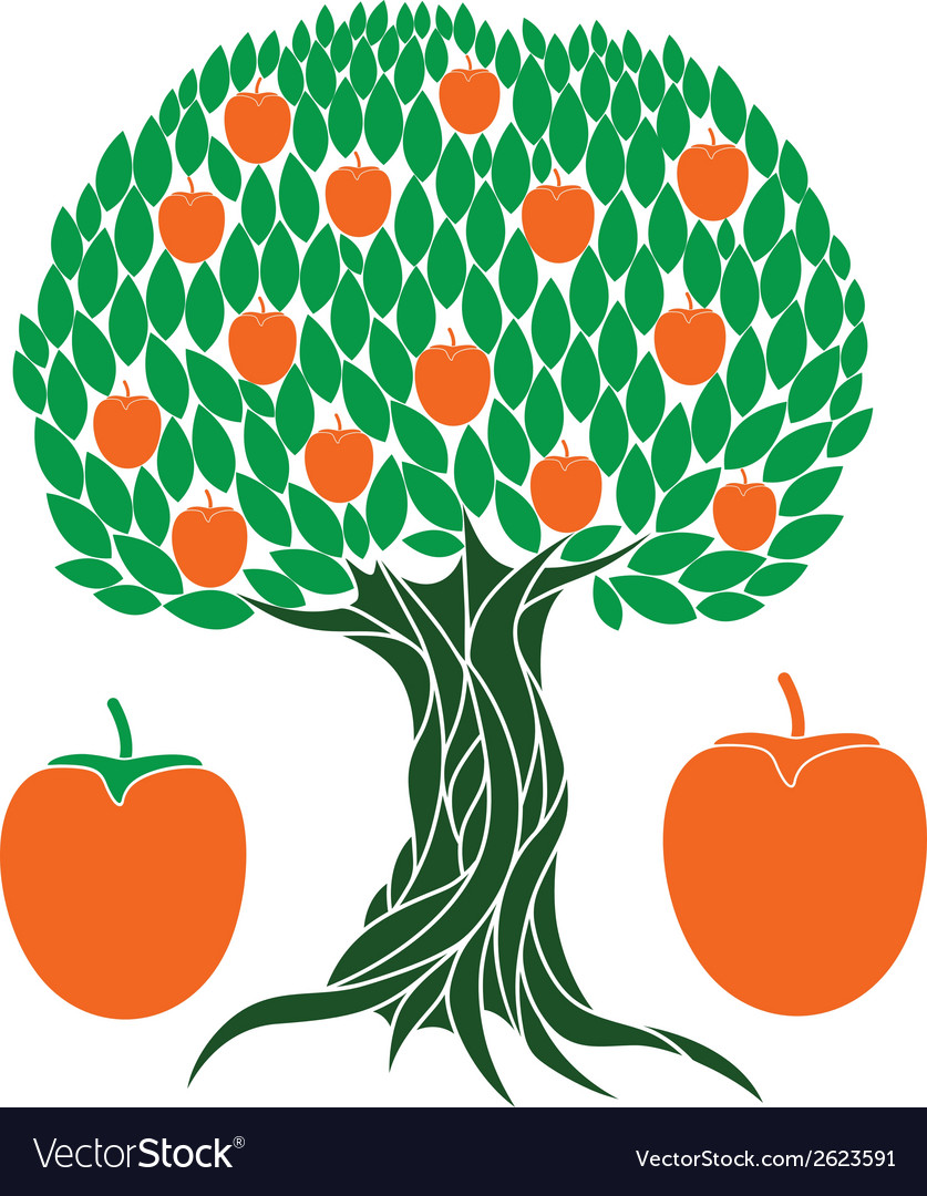 Persimmon tree vector | Price: 1 Credit (USD $1)