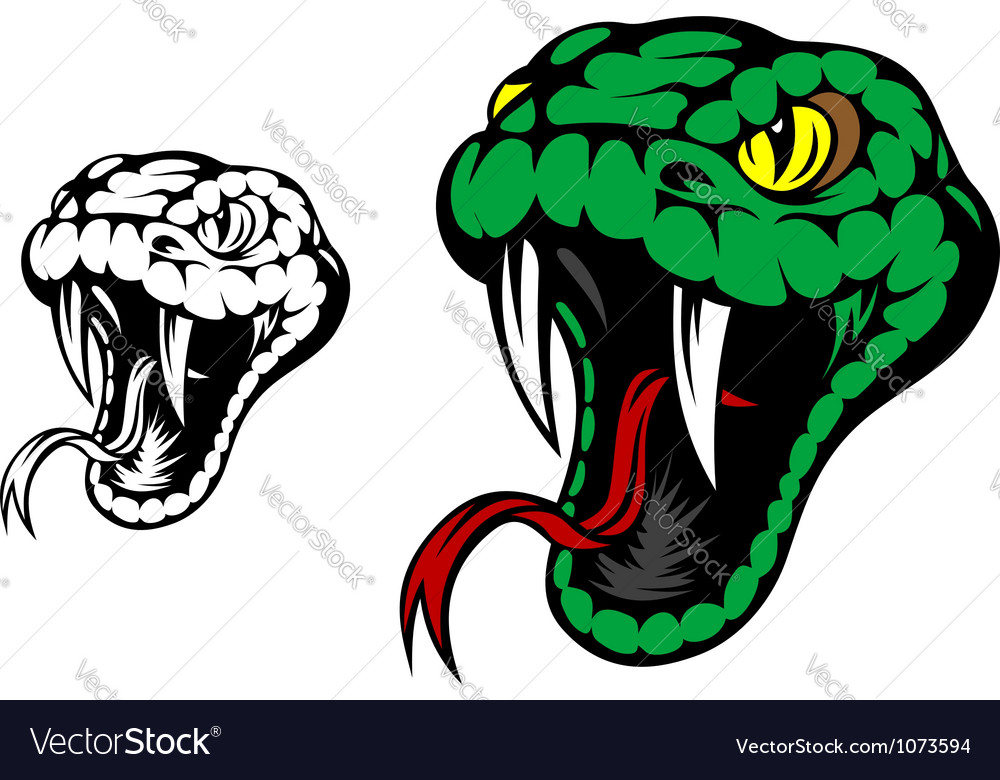 Head of danger aggressive snake vector | Price: 1 Credit (USD $1)