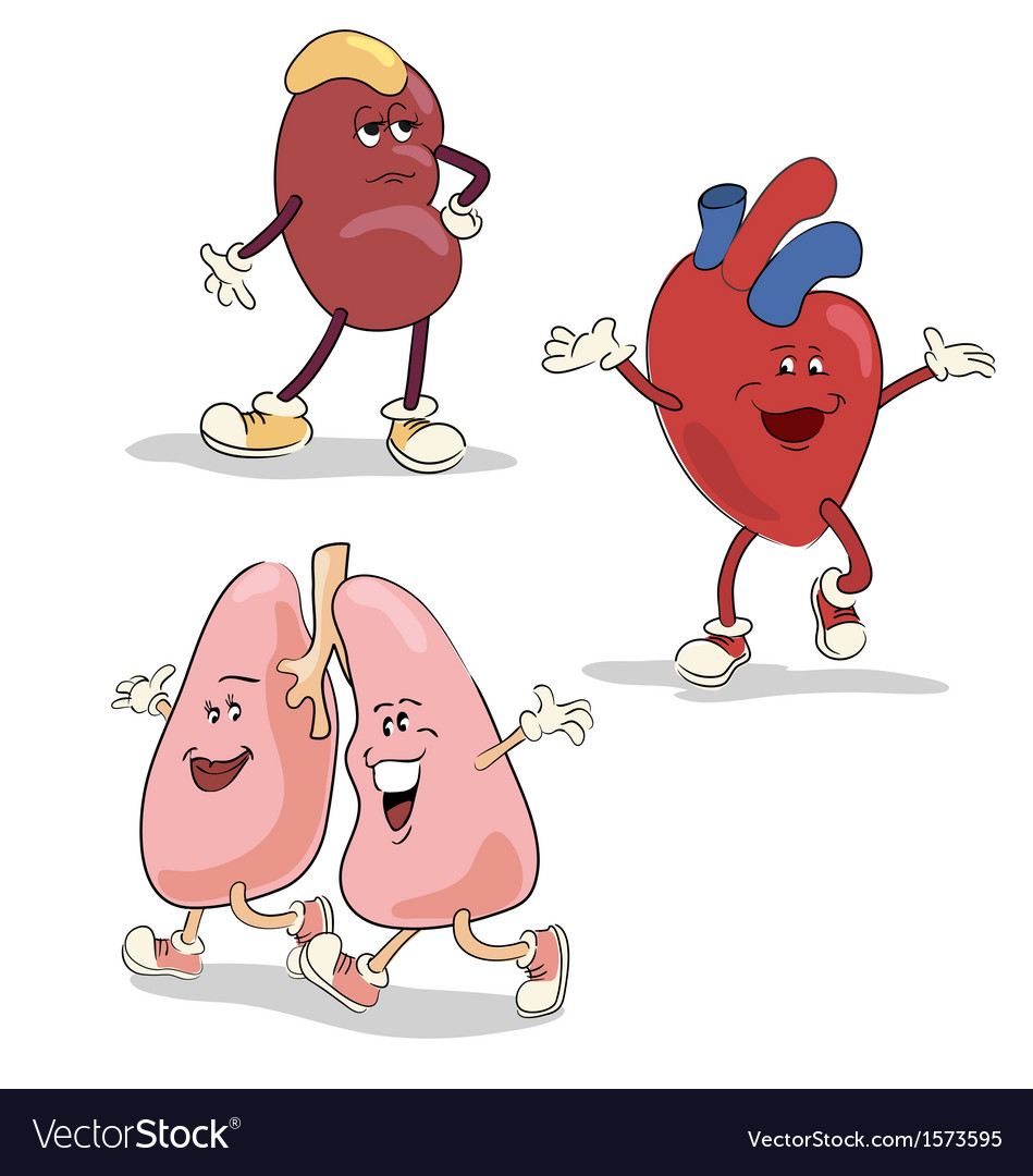 Human internal organs characters 1 vector | Price: 1 Credit (USD $1)