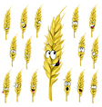 Wheat ear cartoon vector