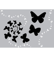 Butterfly black s vector
