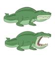 Crocodile alligator vector