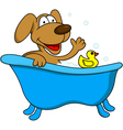 Dog bathing vector