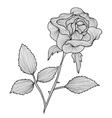 Decorative rose vector