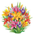 Bouquet of lilies and irises vector