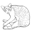 Laying down cat vector